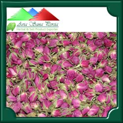 Damask Rose - Iran Medical Herb Exporter